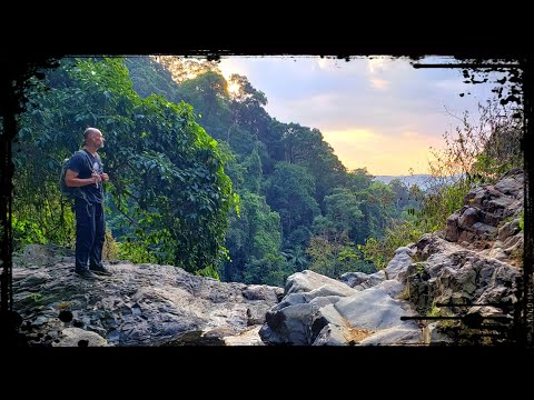 Surviving the Jungles of Thailand Your Travel Videos