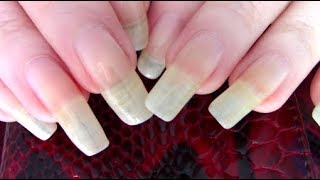 ASMR soft scratching & soft tapping ~ Bare long nails ~ 30 mins relaxation