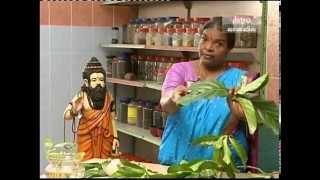Health Benefits of Nuna Plant (Morinda citrifolia) pt1