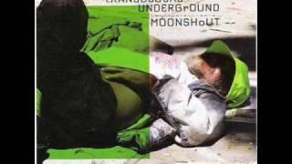 Transglobal Underground - Dancehall Operator