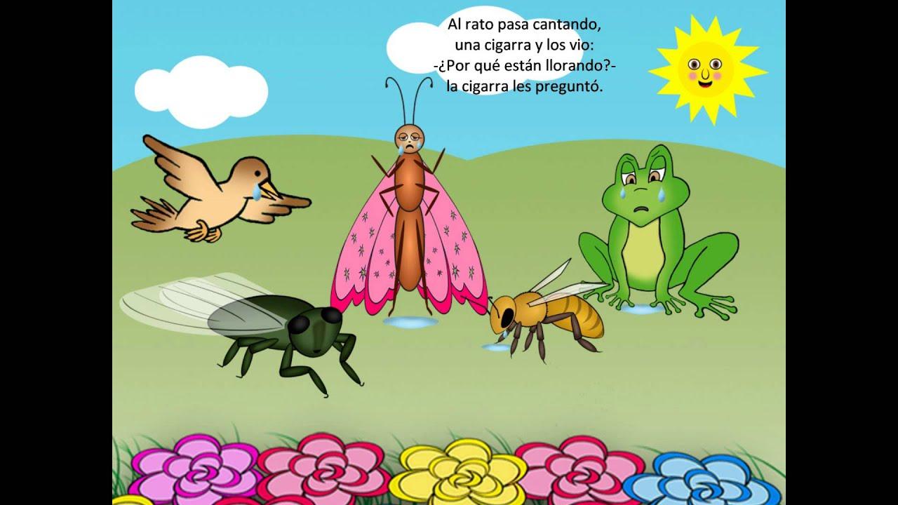 La mariposa Rosita, cuento con rima para niños - YouTube