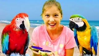 - Видео для девочек. Приключения Попугая Кеши и лучшей подружки Полен. Игры для детей