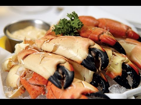 Stone Crabs and Key Lime Pie: Florida Keys Food Adventure