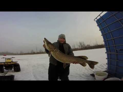 1st Ice Fishing Tournament Win$$$$ With Northern Pike