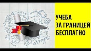 Образование за границей бесплатно: советы и лайфхаки