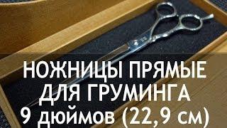 Ножницы для груминга прямые 9 дюймов (22,9 см) CY-63(http://thezoo.ru/ Ножницы для груминга прямые 9 дюймов (22,9 см) CY-63 Недорогие и качественные ножницы для груминга...., 2013-11-28T07:58:32.000Z)