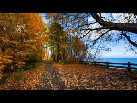 Wolfgang Schneiderhan - Brahms - Violin Sonata No 3 in D minor, Op 108