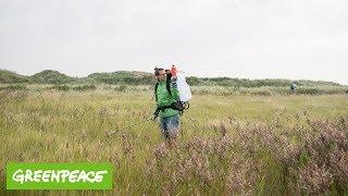 Plastikmüll: Einsatz im Wattenmeer