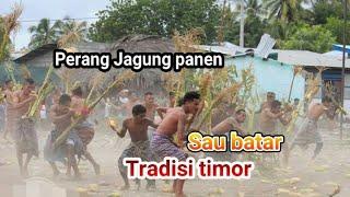 Tradisi perang panen jagung-Sau Batar