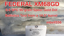 Federal XM68GD 6.8 SPC 90 Grain Gold Dot Ballistics Test in LWRC Six8 DI Build