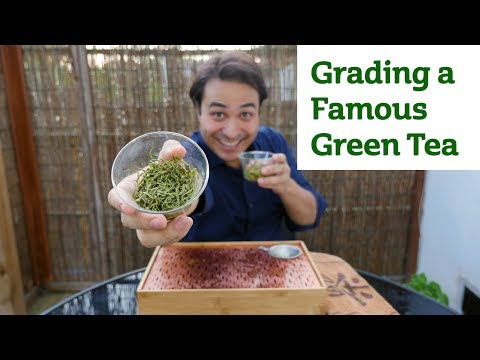 Grading a Famous Green Tea