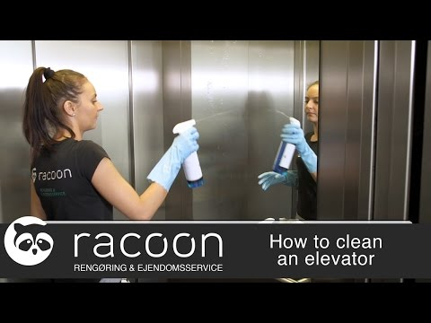 Racoon - How to clean an elevator