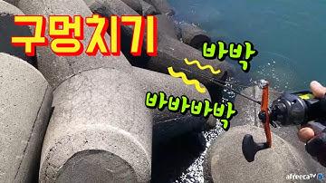 (35만 조회수)태안 (코믹) 테트라 구멍치기 미친 손맛