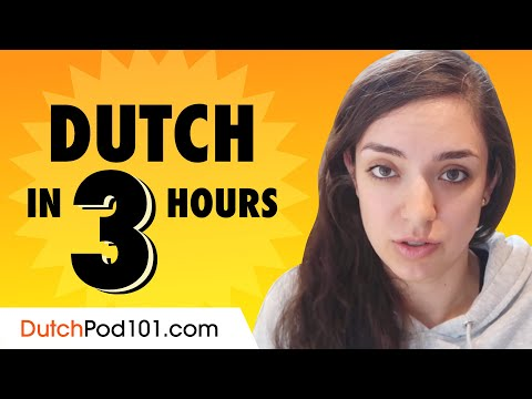 Learn Dutch In 30 Minutes All The Basics You Need Youtube
