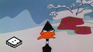 Looney Tunes Classic | Hunting Season | Boomerang...