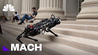 Cheetah 3 Is A Blind Robot That Doesn't Need Sensors To Navigate | Mach | NBC News
