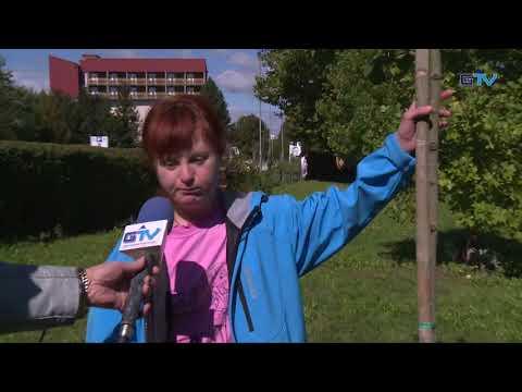GORENJSKA POROČILA: V Varstveno delovnem centru Kranj posadili lipo