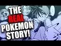 The REAL Pokemon Story! (Pokemon Adventures Manga Red)