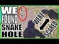 WE FOUND A SNAKE HOLE  |  SCREAMING LIKE A GIRL