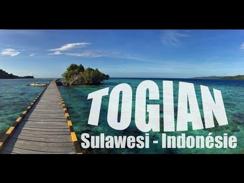 Malenge island : Les Togian, îles de rêve à Sulawesi