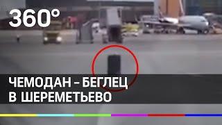 Побег чемодана в Шереметьево. Сумка-аэрофоб, нанотехнология и другие приколы в сети