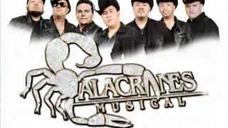 Alacranes Musical - Rueda Mi Mente (Estreno 2013 - 2014)