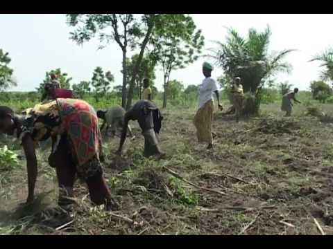 Food Security in Togo and Rwanda