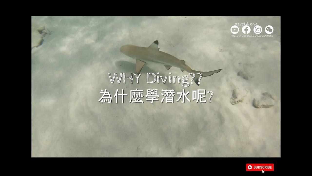 WHY Scuba Diving?? 為什麼學潛水呢? Malaysia Island