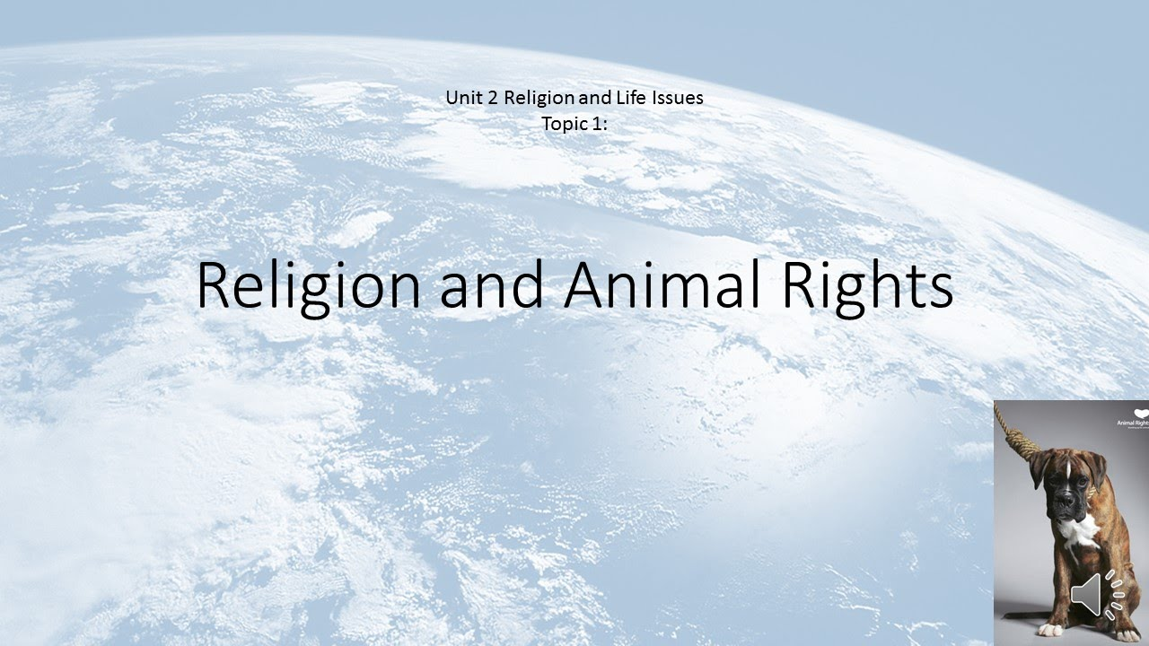 religion and animal rights essay Animal research essay resources  understanding animal research has set up a dedicated website to track animal rights extremism (related to animal research), and.