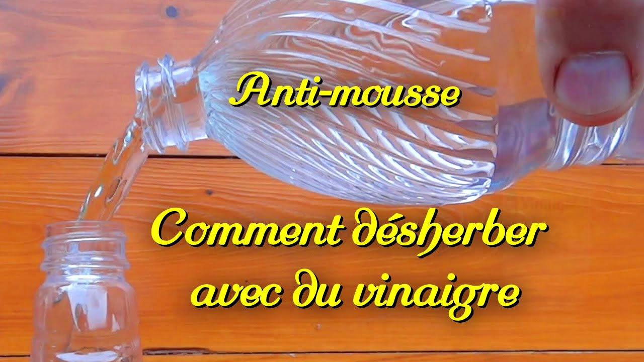 d sherbant bio cologique anti mousse le vinaigre blanc youtube. Black Bedroom Furniture Sets. Home Design Ideas