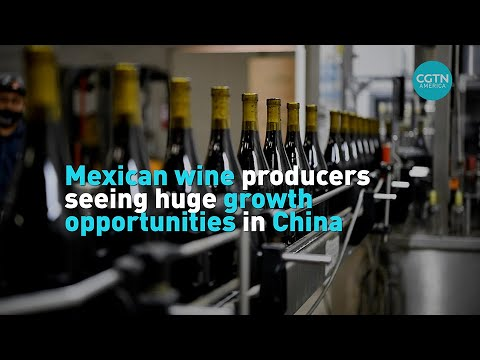 Mexican wine producers seeing huge growth opportunities in China