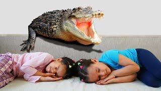 PIPOINA. Лера и Вика. Побег от крокодила.
