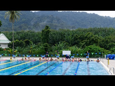 Effortless Swimming's Hell Week Swim Camp