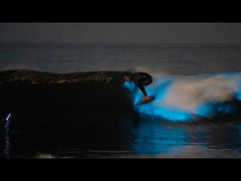 Surfing At Night Under Full Moon In Bioluminescence