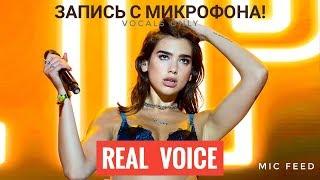 Голос с микрофона: Dua Lipa - New Rules (Голый голос)