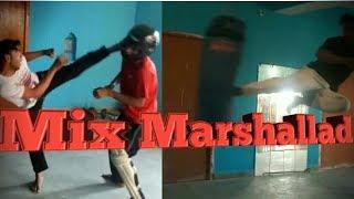 Mix Marshal Art/By Manish Kumar Valmiki