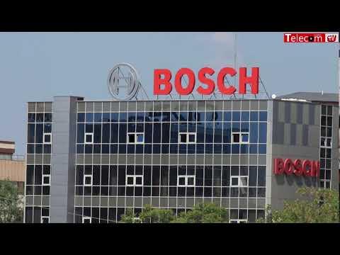 Boldijar, Bosch: Ar