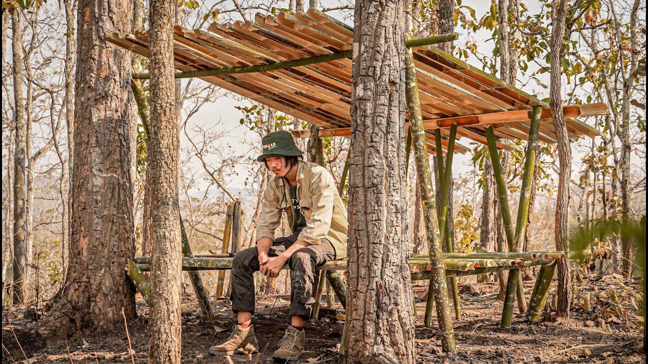 ใช้ชีวิต 24 ชม. ในป่าเต็งรังฤดูร้อน สร้างที่พัก...!! ^^ [Jungle Funny]