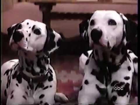 Making Of Disney S 101 Dalmatians Abc Promo 1996 Youtube