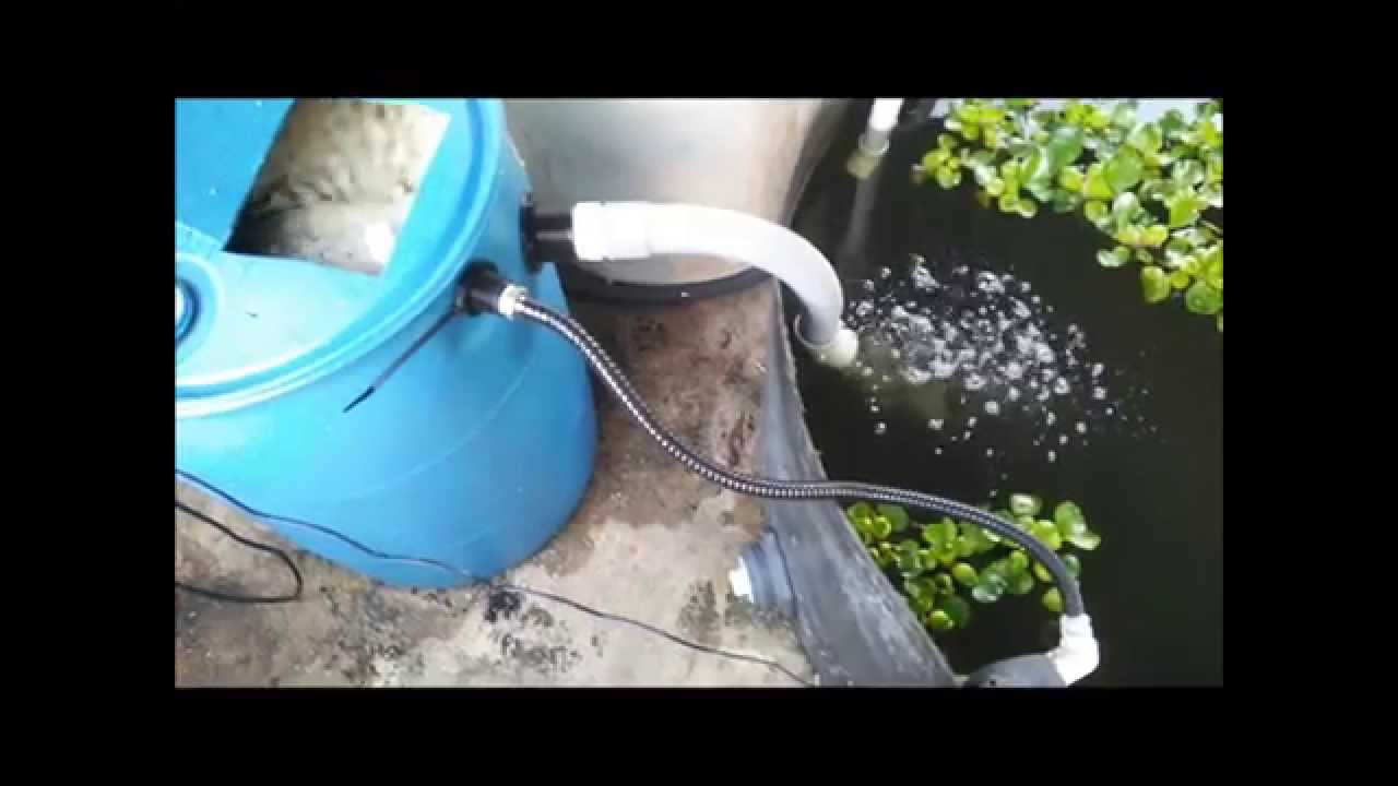 Diy Moving Bed Filter Tide Machine Without Bell Siphon