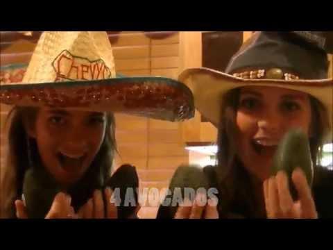 The Guacamole Song