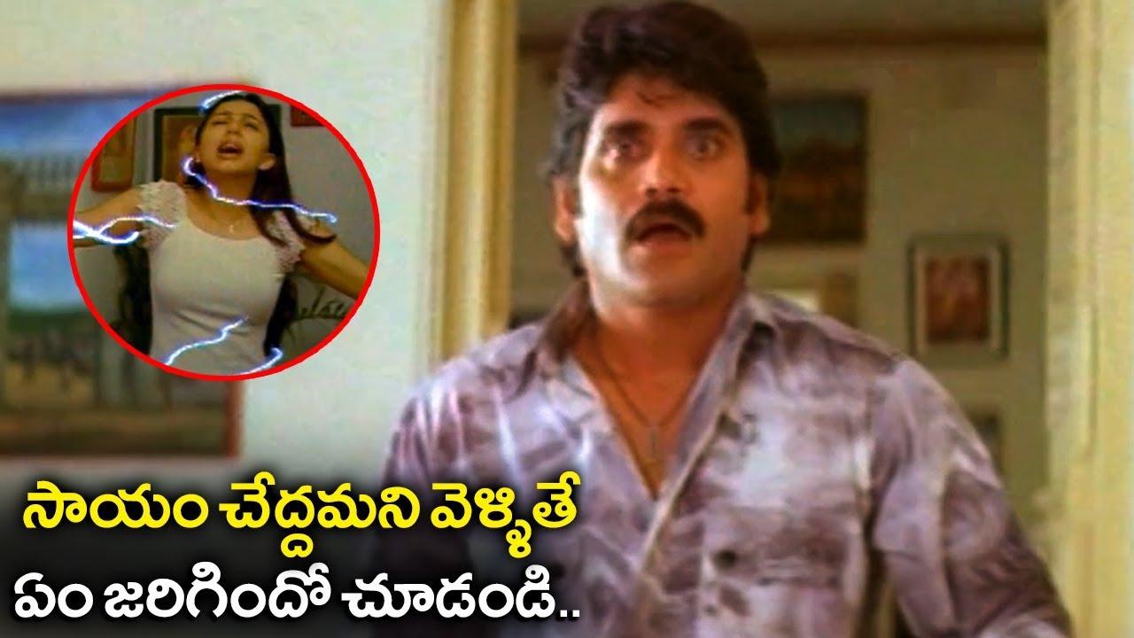Nagarjuna And Bhoomika Love Scenes | Emotional Scenes | #NagarjunaMovies