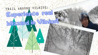 Experiencing Real Winter In Vilnius, Lithuania! (4k Video Footage)