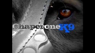 Chaperone K9