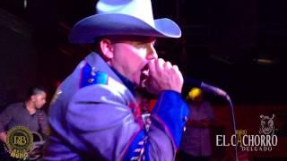 Mario El Cachorro Delgado Cantando en Alebrijes Night Club