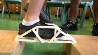 Dr. T Martin's Engineering Assesment: Balsa Wood Bridge.