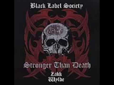 Black Label Society   Ain't Life Grand