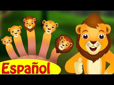 Familia Dedo León   ChuChu TV Canciones Infantiles para Niños