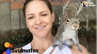 Squirrel Keeps Visiting Her Human Mom After Her Release | The Dodo Soulmates thumbnail