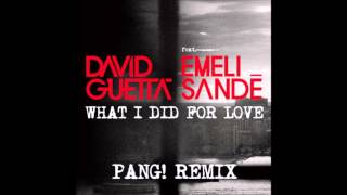 David Guetta feat. Emeli Sande - What I Did For Love (PANG! Remix)